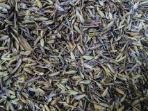 Reis-Hülse lizenzfreies stockfoto