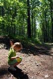 Reis in het bos royalty-vrije stock afbeelding