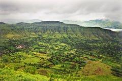 Reis India, tropische groene vallei stock fotografie