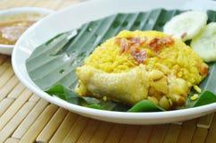 Reis kochte mit Huhn im Curry auf Platte mit würziger Soße Lizenzfreies Stockbild