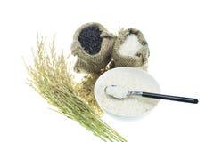 Reis lokalisiert auf weißem Hintergrund Stockfoto