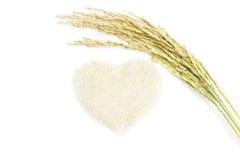 Reis lokalisiert auf weißem Hintergrund Lizenzfreies Stockfoto
