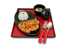 Reis mit Curry Teriyaki Lizenzfreie Stockbilder