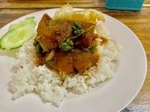 Reis mit Fischcurry stockfoto