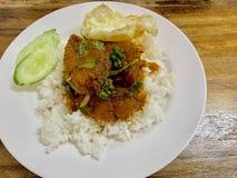 Reis mit Fischcurry lizenzfreie stockfotos