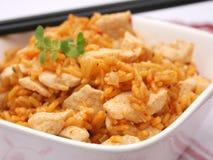 Reis mit Fleisch Lizenzfreies Stockfoto