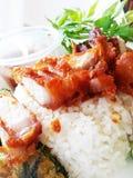 Reis mit frittiertem Schweinefleisch Lizenzfreies Stockfoto