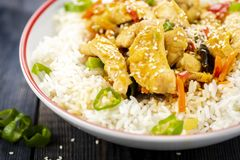 Reis mit Huhn und Gemüse Lizenzfreie Stockfotos