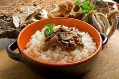 Reis mit Pilz Lizenzfreies Stockbild