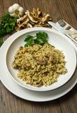 Reis mit Pilzen Stockfotos
