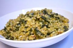 Reis mit Spinat Stockfotos
