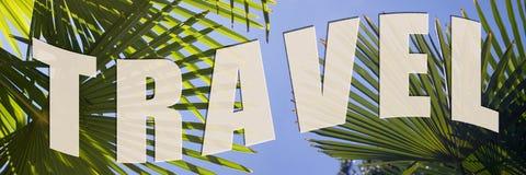 Reis naar palmen Stock Afbeelding