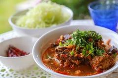 Reis-Nudeln mit würziger Schweinefleischsoße Lizenzfreie Stockfotografie