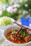 Reis-Nudeln mit würziger Schweinefleischsoße lizenzfreies stockbild