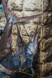 Reis rond Afrika marlijnvissen in de markt stock fotografie