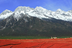 Reis rond Jade Dragon-sneeuwberg Stock Foto's