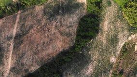 Reis-Terrassen-Luftschu? Bild des sch?nen Terrassenreisfeldes in Thailand lizenzfreie stockbilder