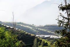 Reis-Terrassen in Ping An Guilin China Stockfotografie
