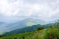 Reis, trekking De zomerlandschap - bergen, groen gras, bomen en blauwe hemel Horizontaal kader Stock Afbeeldingen