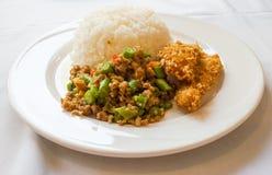 Reis und Curry mit gebratenem Huhn stockbilder