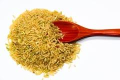 Reis und Löffel Stockbild