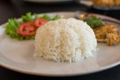 Reis und Omelett stockfoto