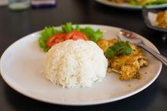 Reis und Omelett stockfotos