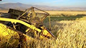 Reis, Weizen, der Schermaschinen erntet stockfotos