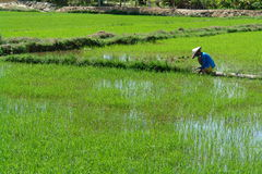 Reisarbeitskräfte Stockbild