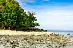 Reisberg Krabi in Thailand Stock Foto