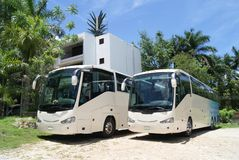 Reisbussen reisbussen op een parkeerterrein of een parkeerterrein worden geparkeerd dat stock foto's
