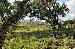 Reise Afrika Lizenzfreie Stockbilder