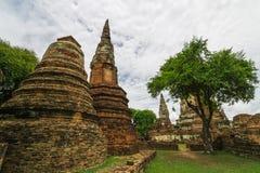 Reise in alter Stadt Ayutthaya Lizenzfreie Stockbilder