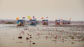 Reise des touristischen Bootes für sehen rosa Lotos Lizenzfreie Stockfotos