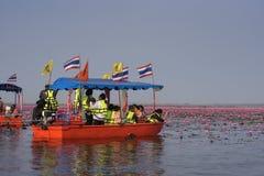 Reise des touristischen Bootes für sehen rosa Lotos Stockbilder