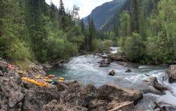 Reise durch die wilde Natur des Altai Koniferenwälder und das Tal des Gebirgsflusses Bashkaus RAUM FÜR BEDECKUNGSschlagzeile UND  stockfoto