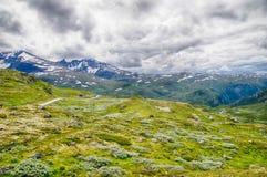 Reise in Norwegen-Bergen am Sommer Lizenzfreie Stockfotos