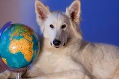 Reise um die Welt Lizenzfreie Stockbilder