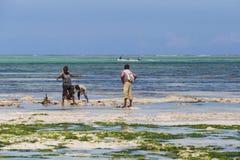 Reise um Tansania Eine Gruppe afrikanische Fischer, die auf dem Strand auf Hintergrund des blauen Himmels und des Ozeans stehen stockfotografie