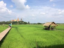 Reise Wat Tham Sua Temple mit Reisfeldern in Cafékaffeestube meena Café Kanchanaburi-Provinz, Thailand stockbilder