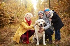 Reise zum Wald während des Herbstes stockbilder