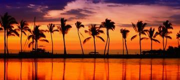 Reisefahne - setzen Sie Paradiessonnenuntergang-Palmen auf den Strand Stockbilder