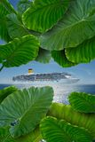 Reiseflug zu verlorener Insel Stockfotos