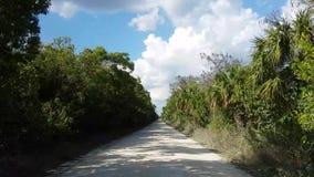 Reisen durch die Wildnis des Everglades-Nationalparks, der auf Schotterwege fährt stock video