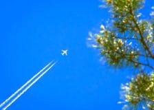 Reisen, Ferien, Transport-Konzept: Jet Airplane mit weißem Contrail im blauen Himmel über den Kiefer-Spitzenniederlassungen stockbild