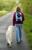 Reisen mit Hund Stockfotos
