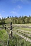 Reisen Sie, um schöne Bäume und bewaldete Höhenkurorte in Kanada zu sehen Stockbilder