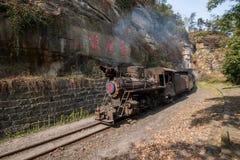 Reisend zwischen Leshan-Stadt, blühen Ka-Yan Yang-Zugbienen Sichuans Qianwei zum kleinen Bahnstation Canola Lizenzfreie Stockfotografie