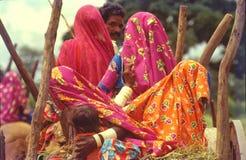 Reisende Ochsenkarren der Nomaden lizenzfreie stockfotos