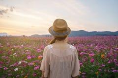 Reisender der jungen Frau, der schönes Blumenfeld schaut stockbild